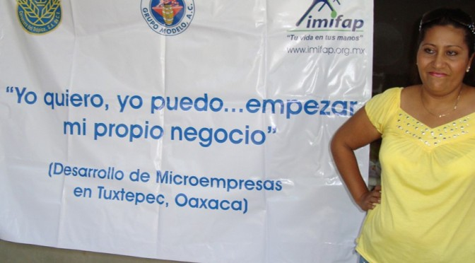 Microenterprise in Mexico: Building Women's Businesses