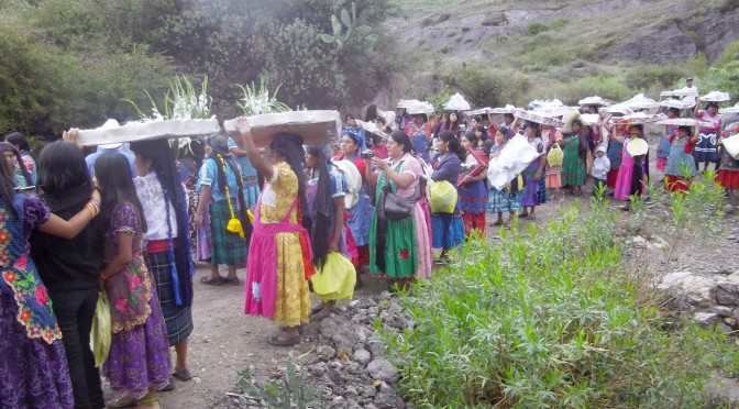 Brideprice in a Zapotec Village: Evolving Economic Theory?